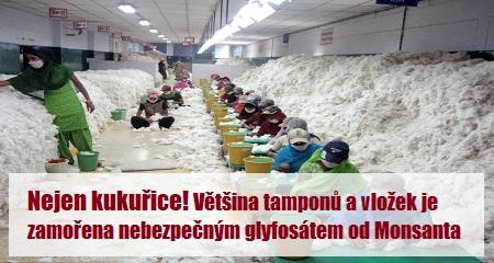 ČASOPIS ŠIFRA: Nejen kukuřice! Většina tamponů a vložek je zamořena nebezpečným glyfosátem od Monsanta
