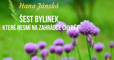 Hana Jánská: Šest bylinek, které nesmí na zahrádce chybět