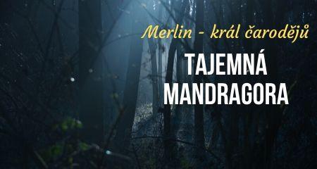 Merlin - král čarodějů: Tajemná MANDRAGORA